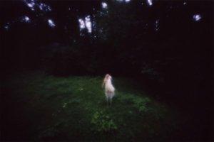 rika noguchi - Marabu #3 - 2005