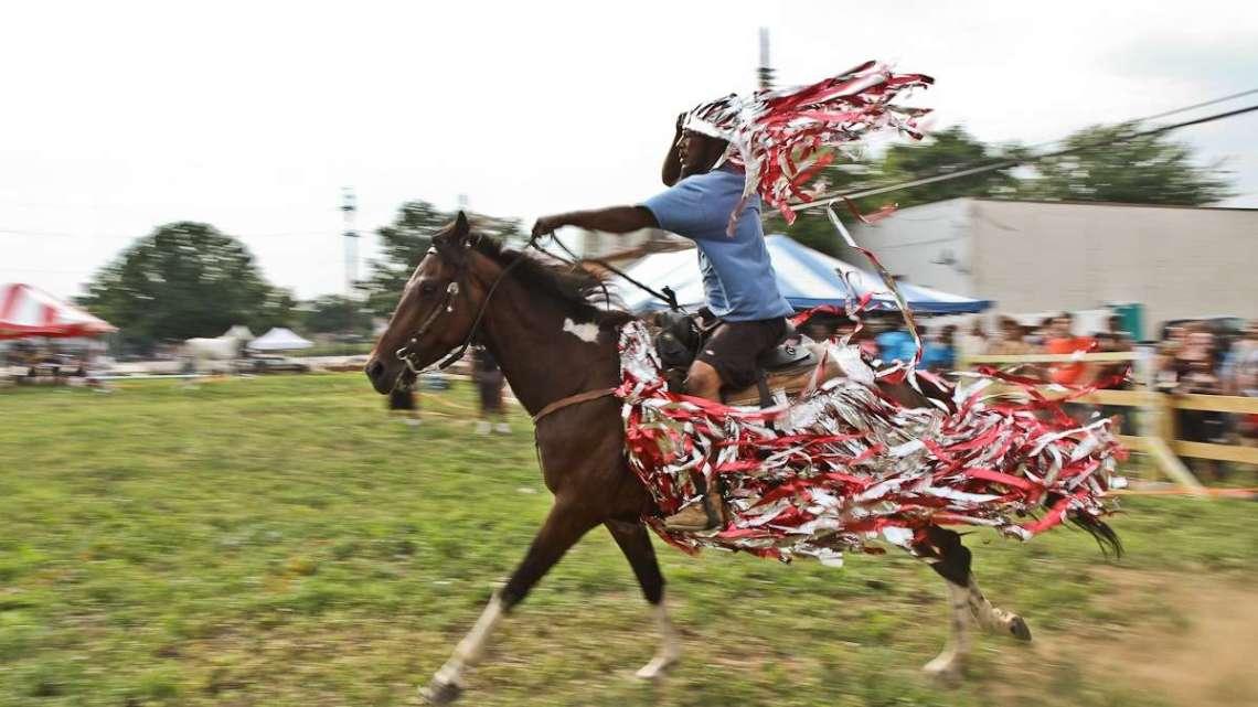 horses_20140715_2010616484